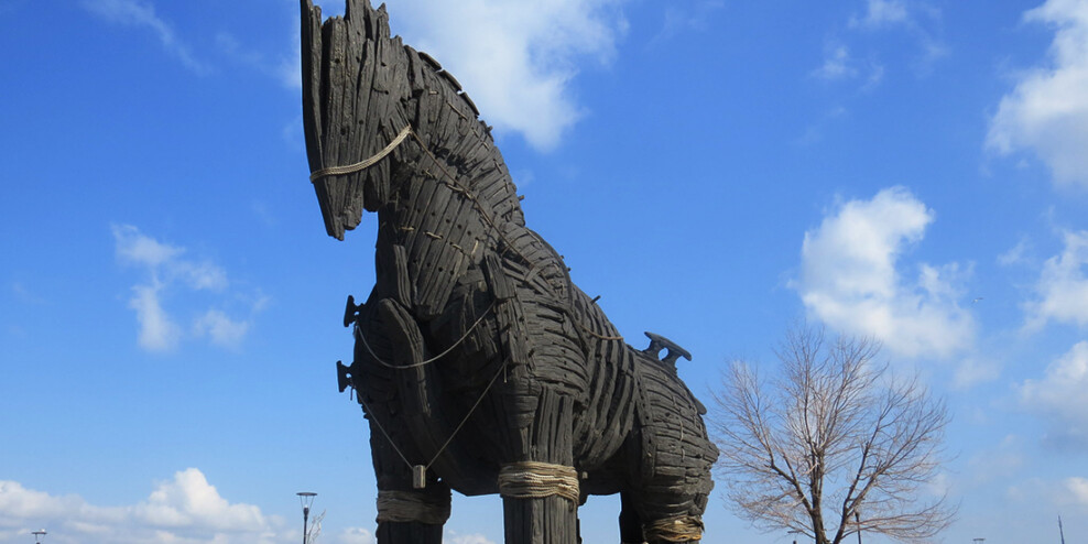 A picture of the Trojan Horse from the movie Troy. The horse is a large sculpture made of wood.